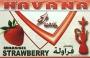 Tabák Jahody (Strawberry) Havana 50g