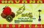 Tabák Kiwi a Jahoda TROPICAL Havana 50g