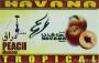 Tabák Broskev TROPICAL (Peach) Havana 50g