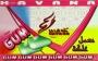 Tabák Žvýkačka (chewing-gum) Havana 50g