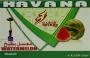 Tabák Meloun vodní (Watter Melon) Havana 50g